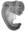 Embryoact