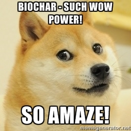 Biochar wow power