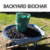 Backyard-biochar-button2