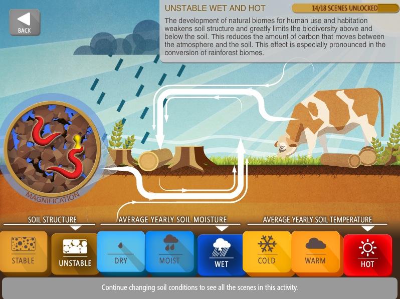 Soil carbon simulator