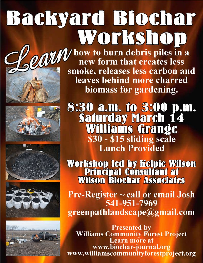 15 biochar workshop WCFP