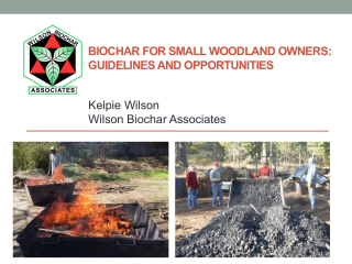 Biochar for Small Woodland Owners